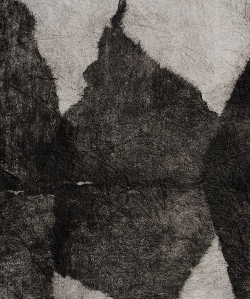 "Landscape series R (2010). Ink on felted hanji; 23 x 34"". Private collection."