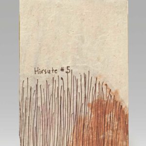 "Hirsute #5 (2016). Ink On Tin-lined Antique Washi And Handmade Mulberry Paper, Persimmon Juice. 6.75 X 4.75"" Closed."