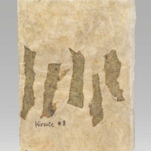 "Hirsute #8 (2016). Ink, Beeswax, Pencil, And Natural Dye On Assorted Handmade Papers. 8 X 5.75"" Closed. Baylor University Library Special Collections."
